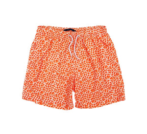 Perry Ellis Men's Swimwear 4DMH8401-OG