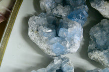 Load image into Gallery viewer, Celestite Druze Cluster (AAA Grade)