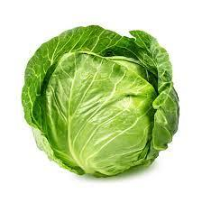 Cabbage - green (half)
