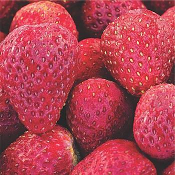 Freeze Dried Strawberries - Totally Pure Fruits, Red Hill (25g)