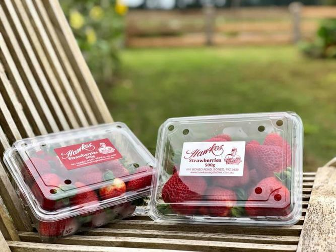 Strawberries - 1st grade Hawkes, Boneo (500g)