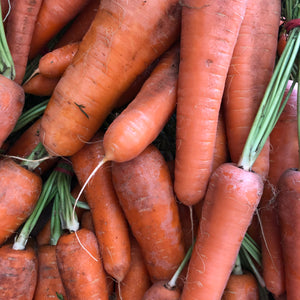 Carrots - heritage - Hawkes Farm, Boneo (bunch)