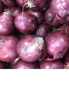 Onion - Red (Single - Medium)
