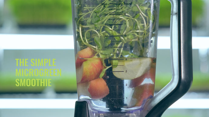 The Simple Microgreen Smoothie