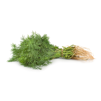 Fresh Dill (1 Bunch)