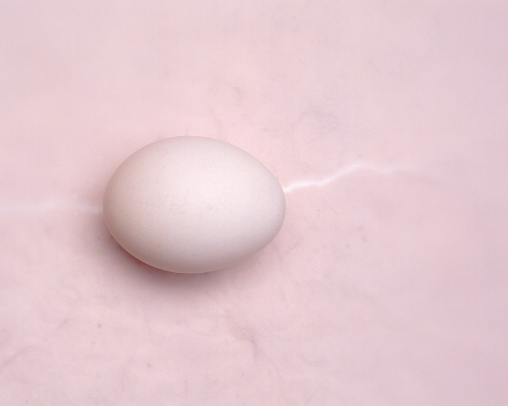 Fertility 101: using nutrition and lifestyle to support egg quality
