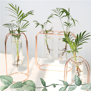 Midcentury Modern Glass and Metal Plant Propagation Stand