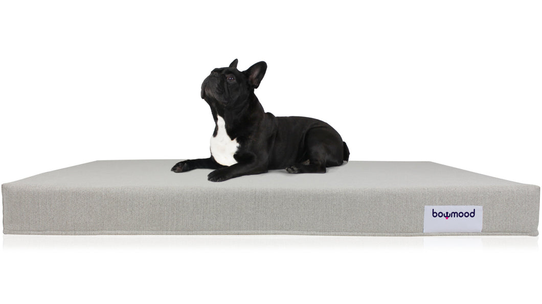 LARGE, ORTHOPEDIC DUAL SIDE DOG BED