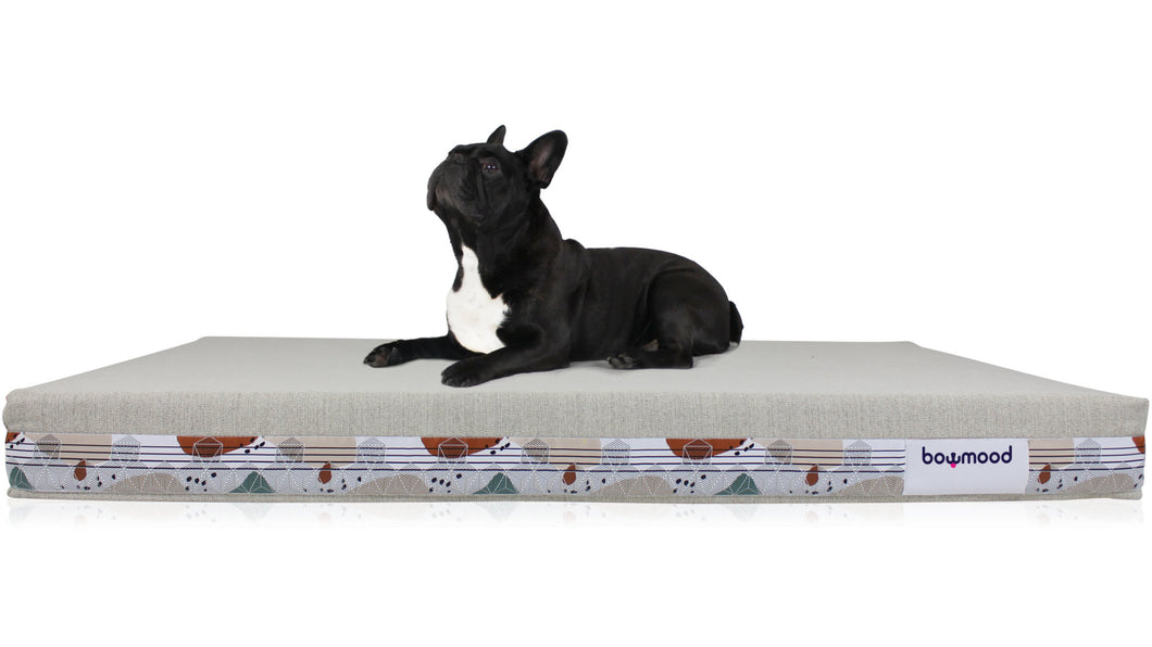 LARGE, ORTHOPEDIC DUAL SIDE DOG BED (colorful)