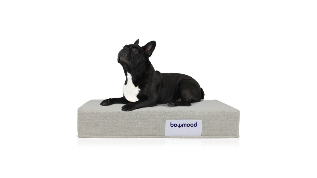 SMALL, ORTHOPEDIC DUAL SIDE DOG BED