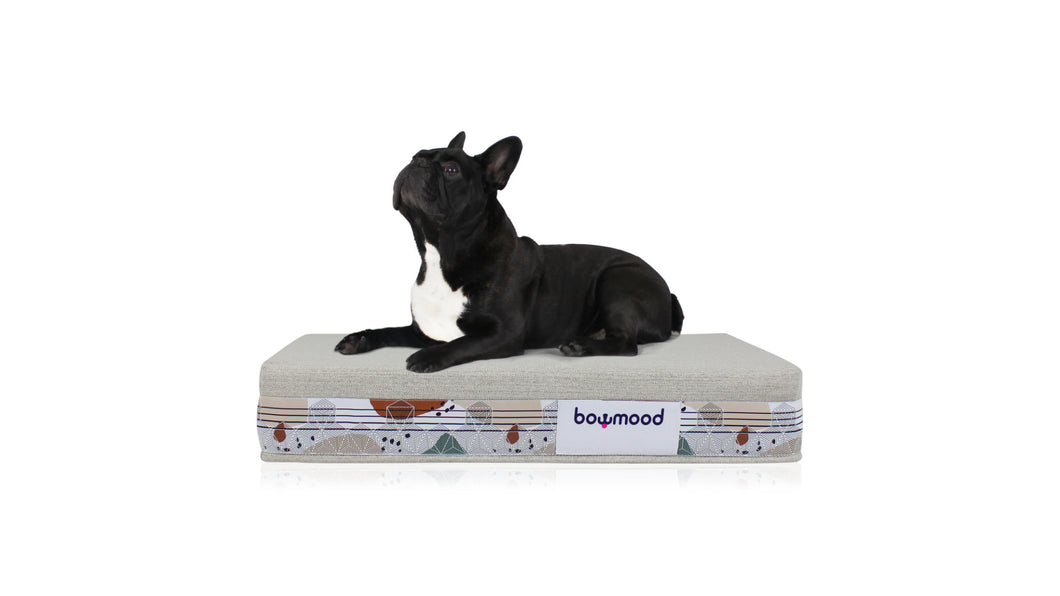 SMALL, ORTHOPEDIC DUAL SIDE DOG BED (colorful)