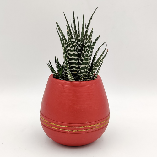 Plant Holiday Themed Pot with a Succulent Plant - mabrook.me