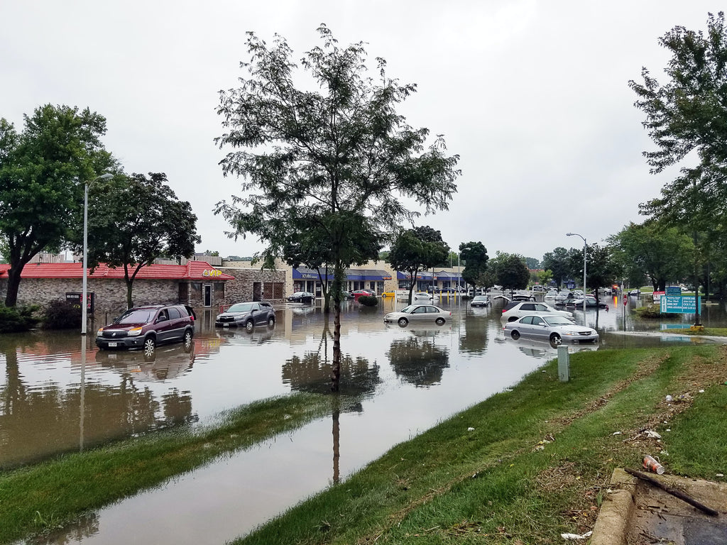 The image shows a flooded street with cars parked outside businesses.