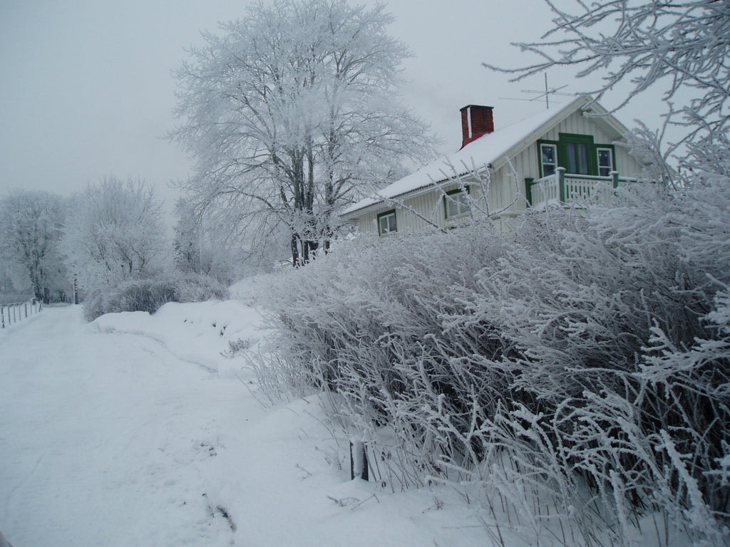 A home and front lawn are covered high with falling snow.