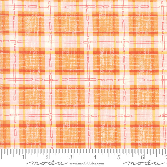 Abby Rose by Robin Pickens  Citrus Plaid
