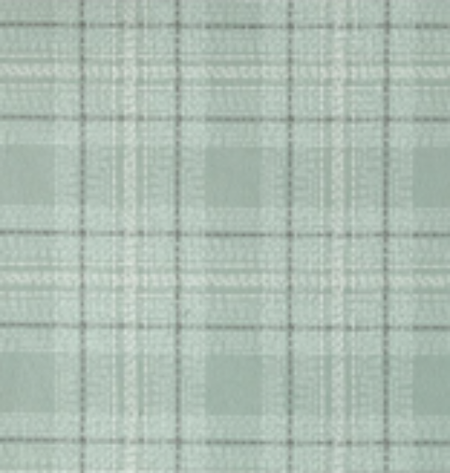 Dash Plaid Flannel from Dear Stella Spruce