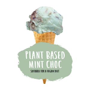 Plant Based Mint Choc Ice Cream