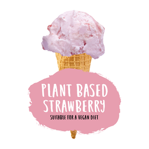 Plant Based Strawberry Ice Cream