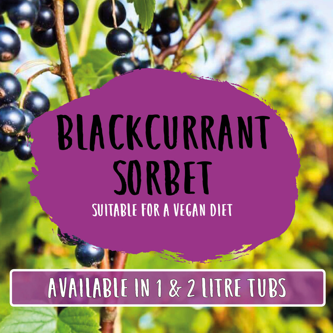 Blackcurrant Sorbet