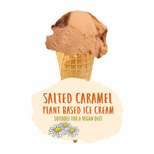 Load image into Gallery viewer, Plant Based Salted Caramel Ice Cream