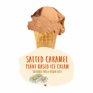 Plant Based Salted Caramel Ice Cream