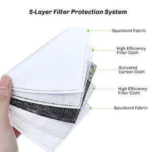 PM2.5 Filter (for Reusable Cotton Mask)