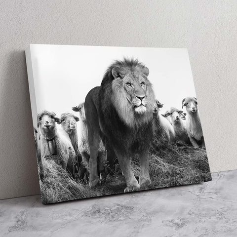Lion Among Sheep - MoodCanvas