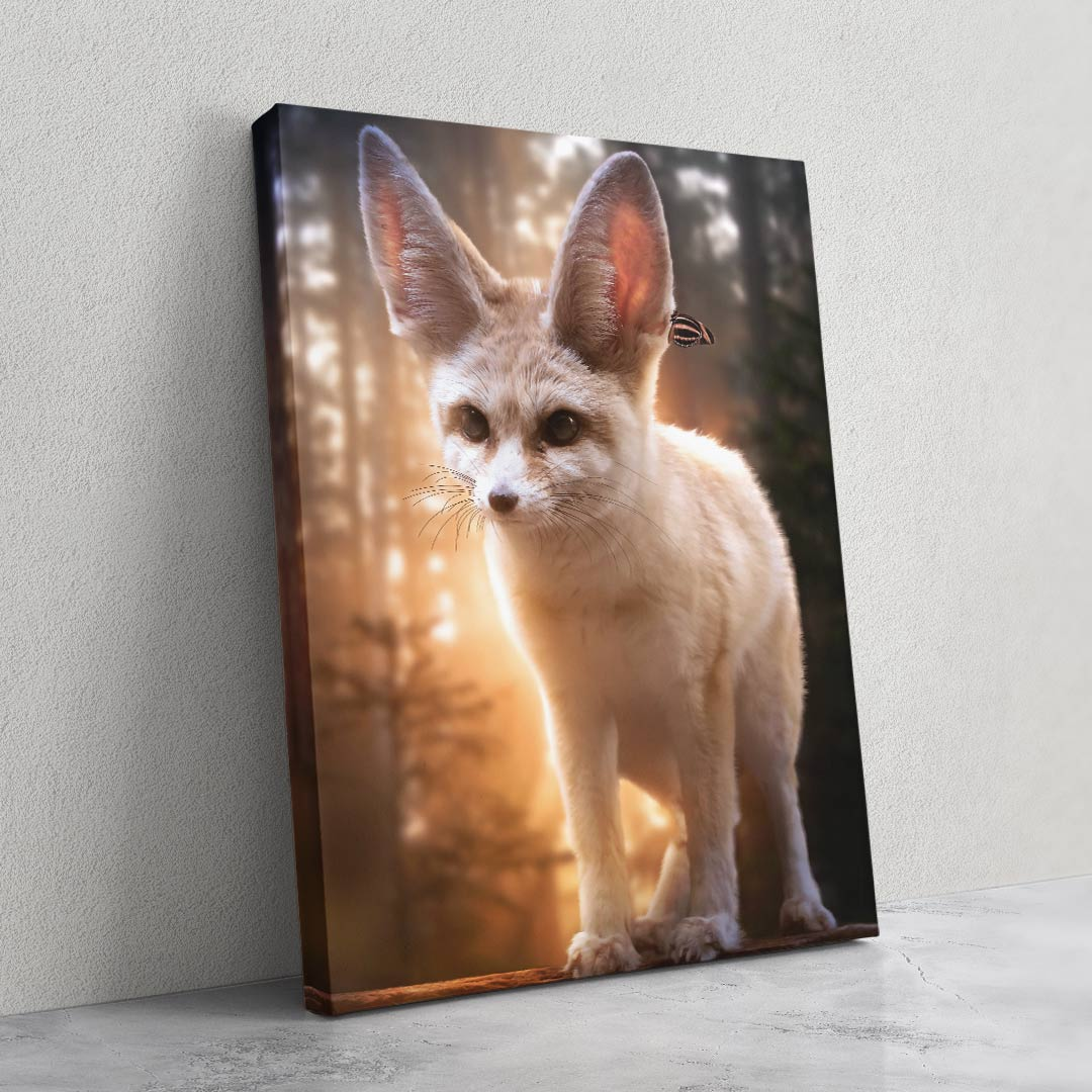 Fennec Fox - MoodCanvas