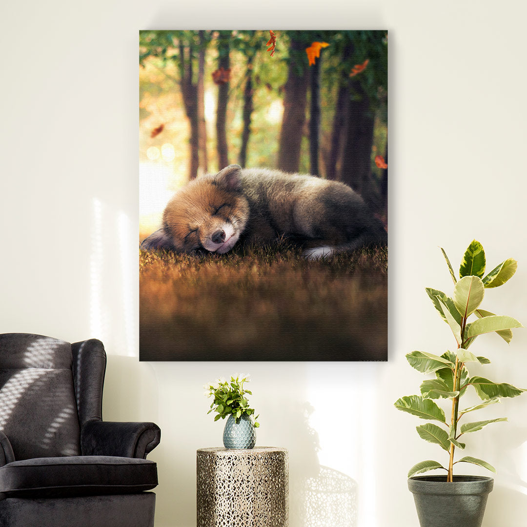 Sleeping Fox Cub - MoodCanvas