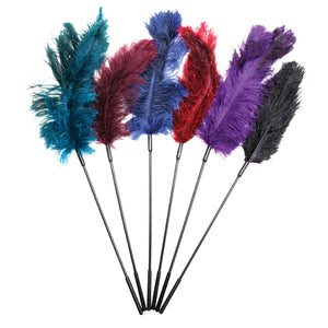Ostrich Feather Ticklers Display (Assorted)