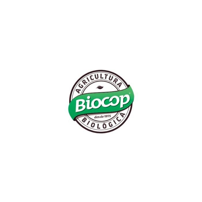 Galleta de Cacao con Chocolate 250g. BIOCOP Galletas ecológicas - Planeta Bio