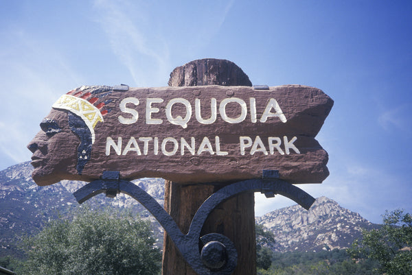 Sequoia National Park Visitors Guide