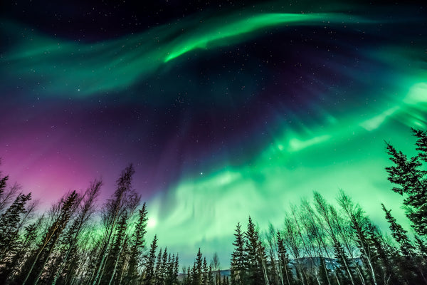 Northern Lights Over Alaska Near Rivers Edge RV Park