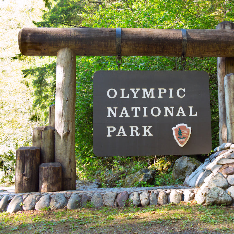 Olympic National Park Sign Near Lake Cushman