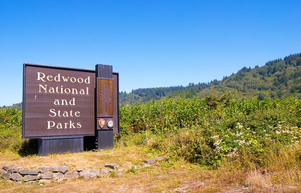 Redwood National and State Parks Sign Near 101 at Redwood National and State Parks California