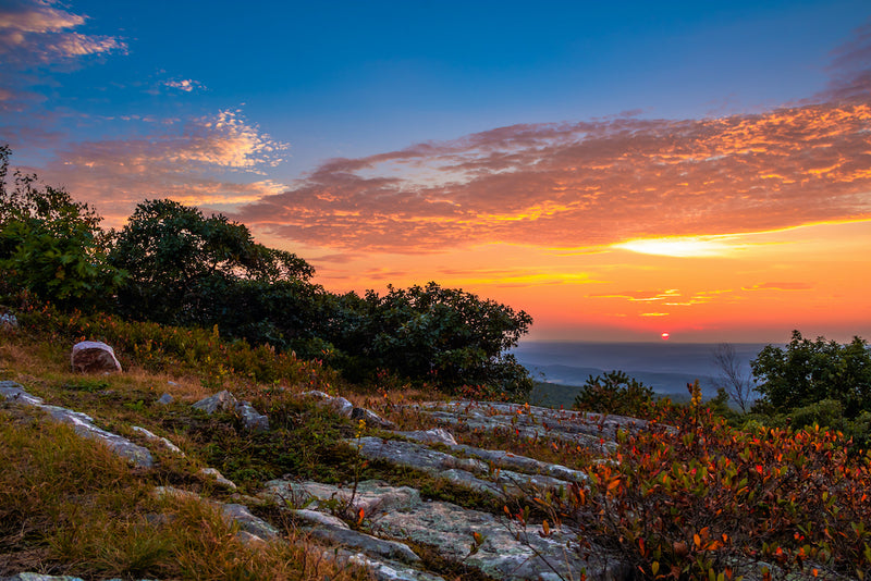 View of Sunset With Blueberry Bushes and Granite Ground at High Point State Park New Jersey