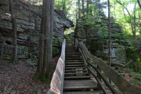 Beartown State Park wooden stairs