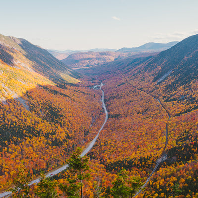 single road through a forest in Crawford Notch State Park