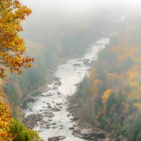 Autumn fog, canyon and river, Gauley River National Recreation Area