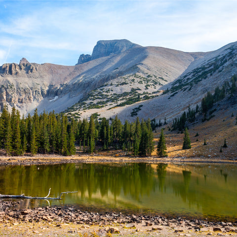sunny day on the Alpine Loop trail in the Great Basin National Park