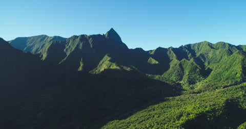 Iao Valley State Park Green for Miles