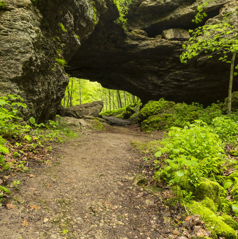 Maquoketa Caves State Park hiking trail