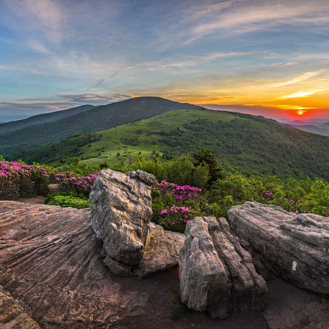 on top of the mountains at Roan Mountain State Park