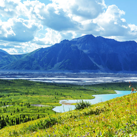 hiking through a field in St Elias National Park