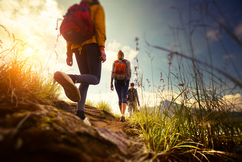 Top Items to Bring for a Hike