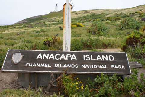 Anacapa Island Channel