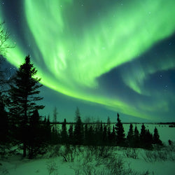 Aurora Borealis Northern Lights in Wapusk National Park in Manitoba, Canada