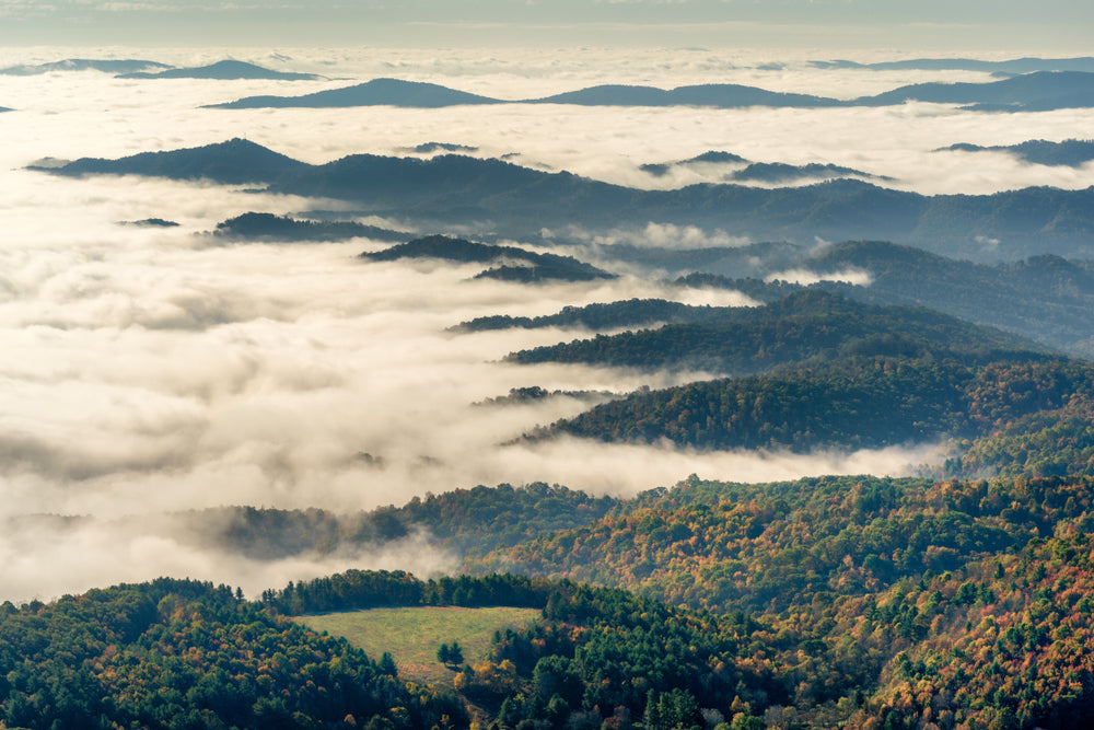Autumn Fog Rolling Over Mountain Tops Grayson Highlands State Park Virginia