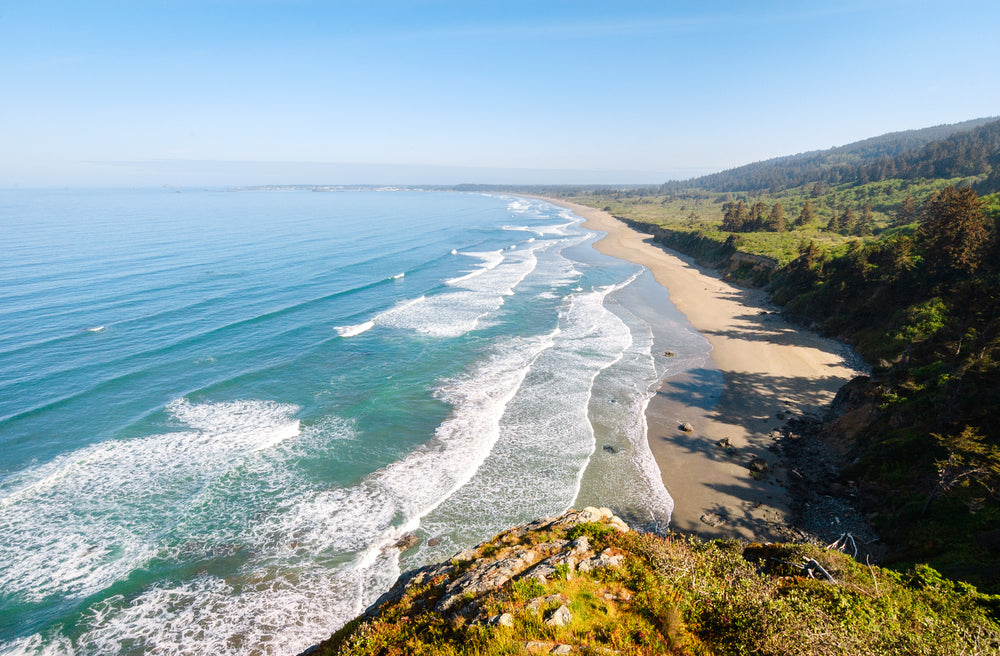 Beautiful Morning Sunny View of Beach at Redwood National and State Parks California