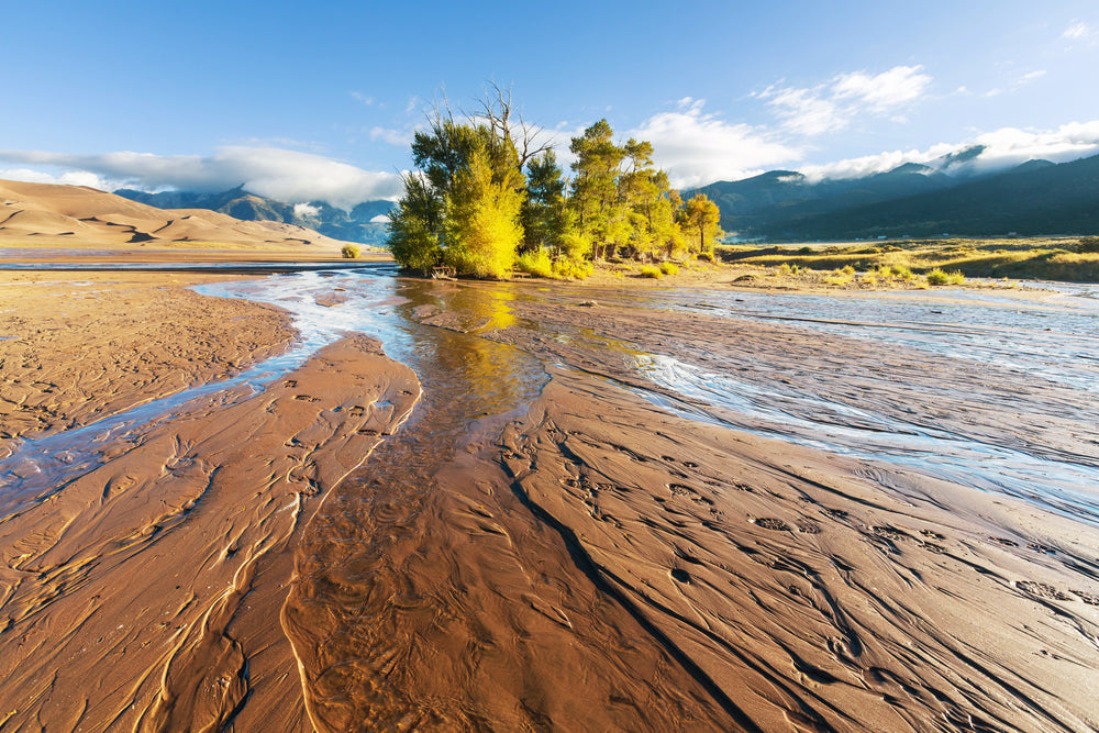 Beautiful Sunny Day at Great Sand Dunes National Park Colorado